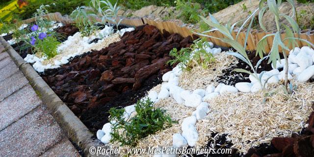Ma bordure de terrasse fa on jardin japonais ou jardin zen for Plante pour bordure