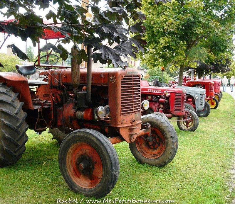 Rassemblement tracteur ancien 2016
