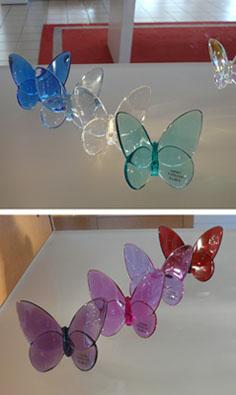 Baccarat-papillons-cristal-coloré