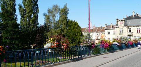 fleurs-sur-le-pont-baccarat-2009
