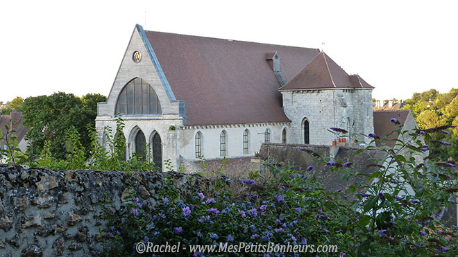 collegiale Chartres