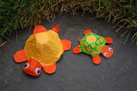 yeux mobiles pour bricolage tortue