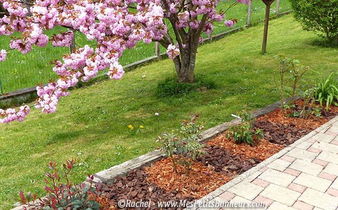 Jardin ma bordure d 39 arbustes fleuris avance for Arbuste de jardin