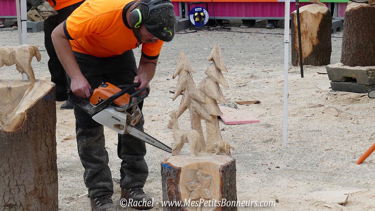 championnat tronconneuse sculpture grandvillars foret
