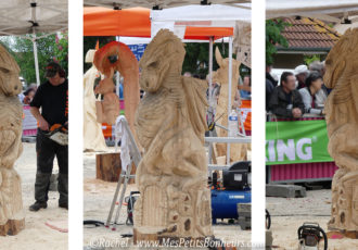 dragon sculpture bois gombert champion france tronconneuse 2016