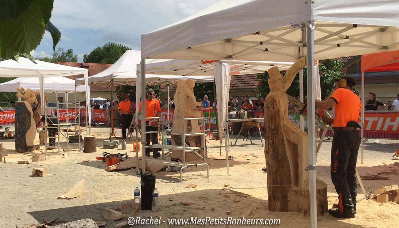 sculpteurs sur bois a la tronçonneuse