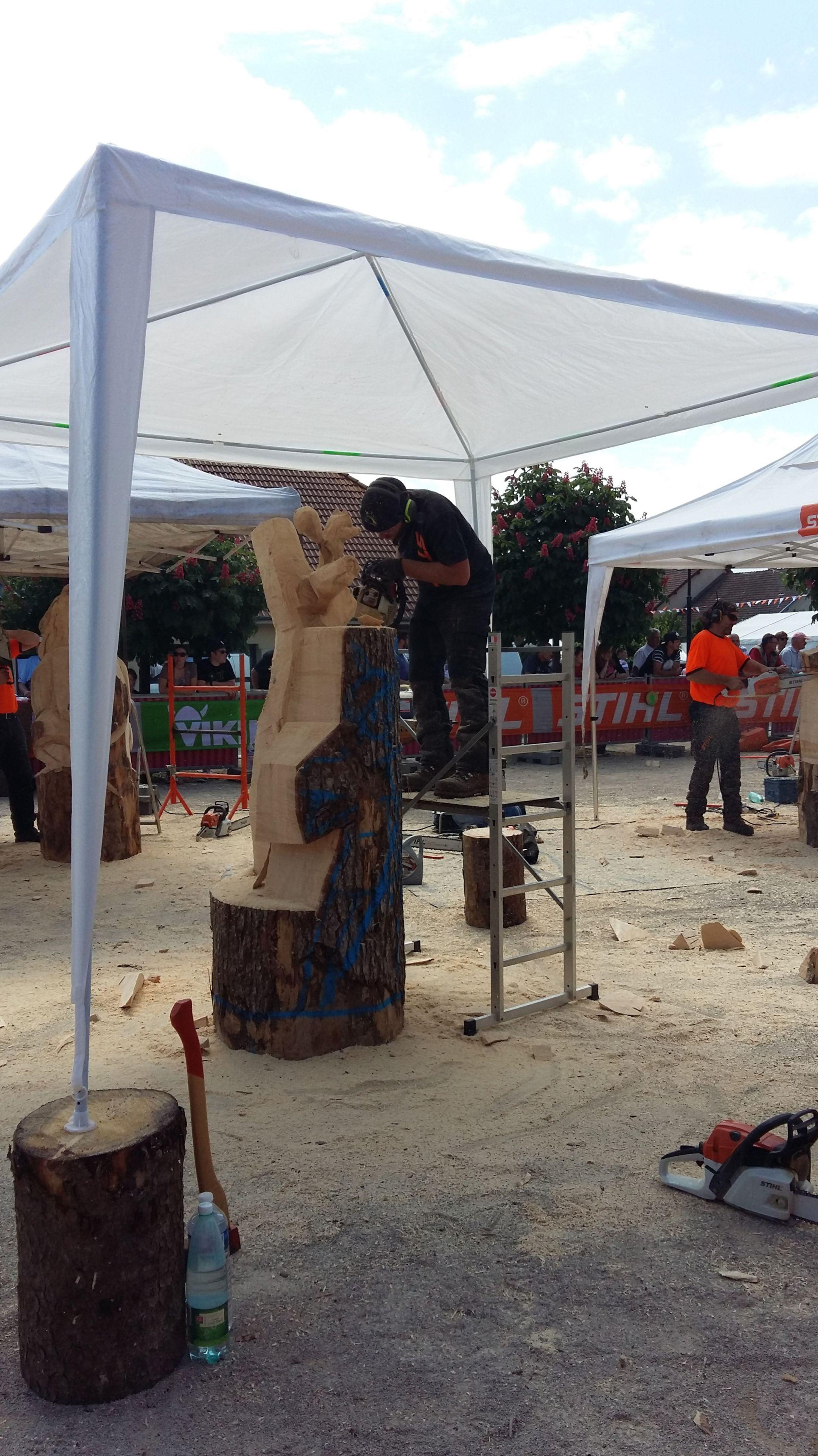 sculpture tronconneuse championnat 2016 epreuve imposée