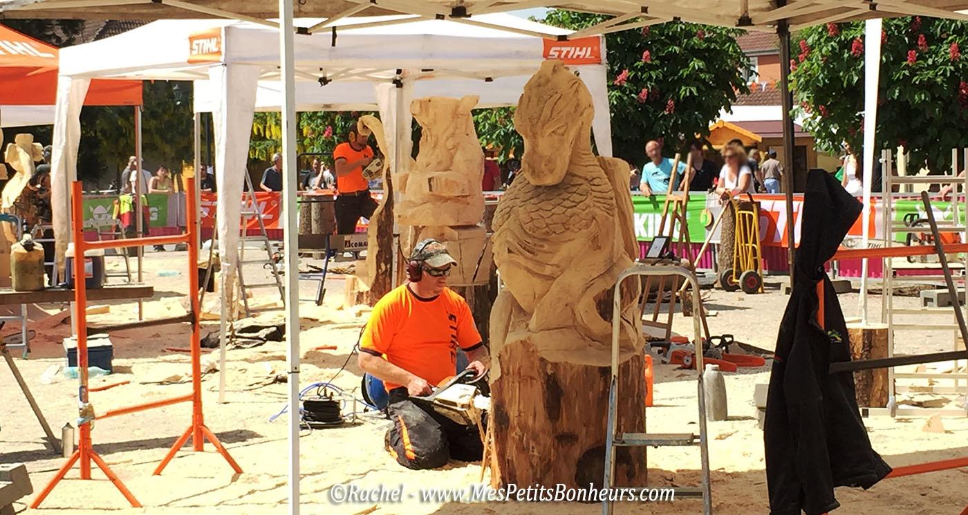 sculptures sur bois grandvillars