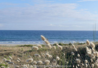 plage plouhinec finistere sud