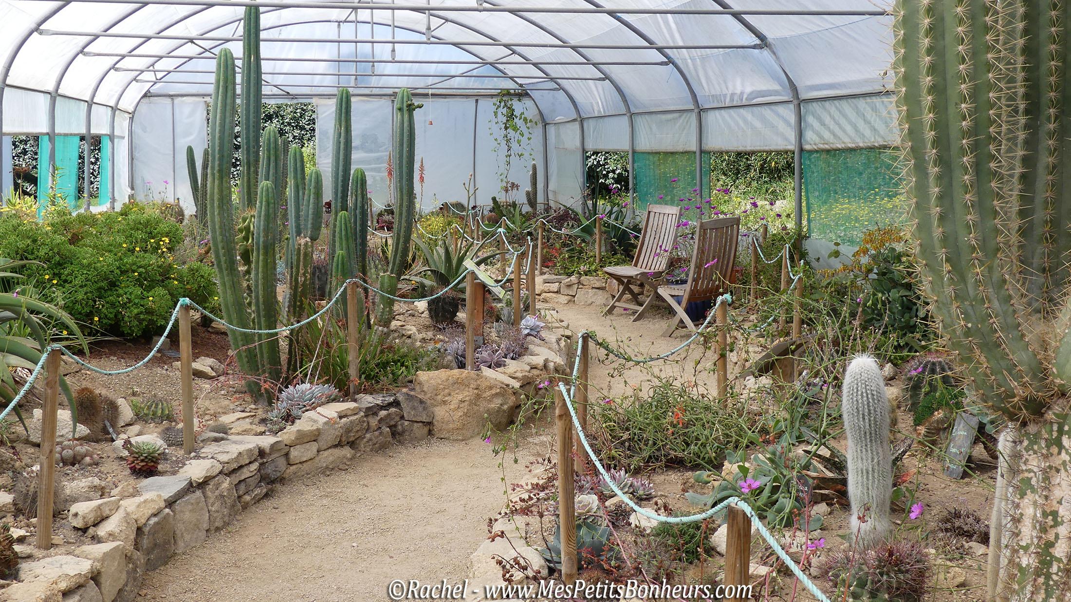 Roscoff balade vers les ports et le jardin exotique et for Plantes en ligne belgique