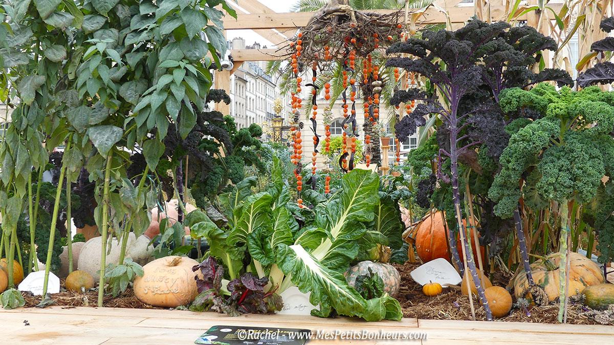 jardin-ephemere-nancy-2016-le-roi-ne-dine-pas-seul