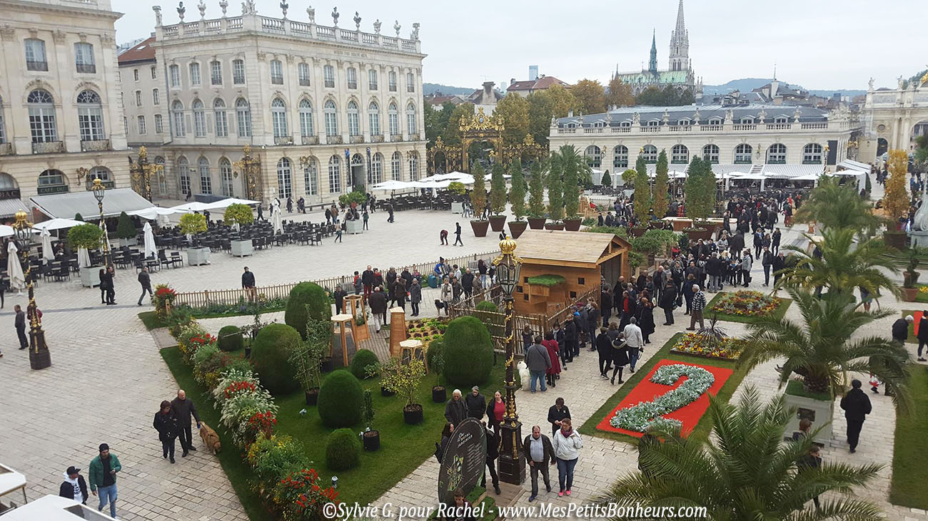 jardin-ephemere-splace-stanislas-nancy-2016-depuis-hotel-de-ville-1