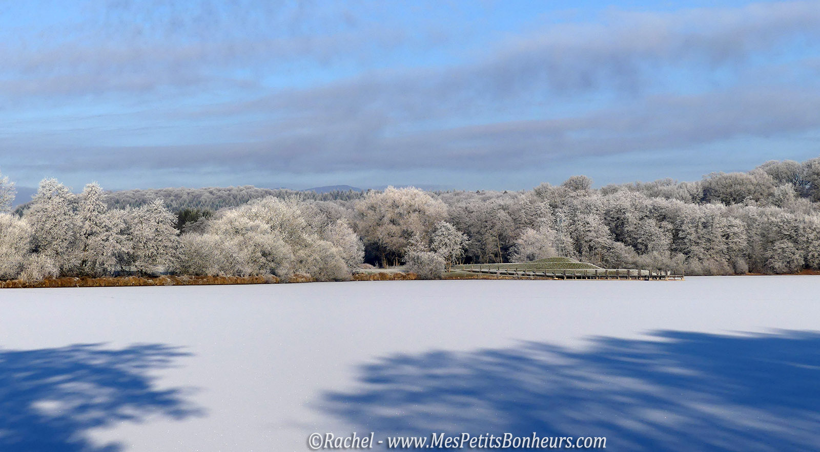 etang-gele-belfort-arbres-blancs