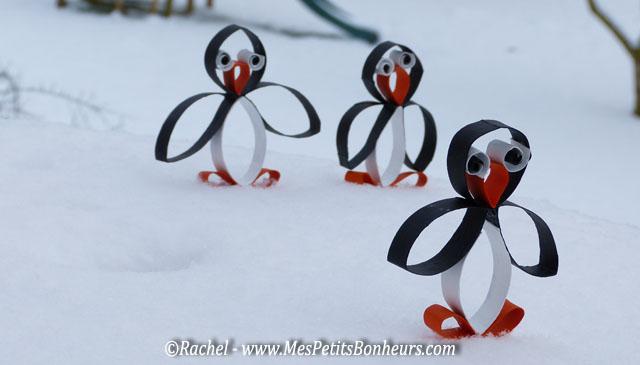 pingouin part en promenade
